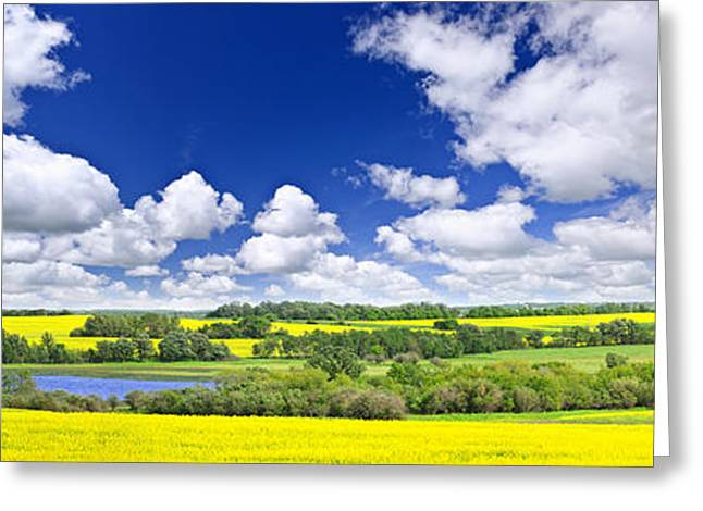 Blue Green Water Greeting Cards - Prairie panorama in Saskatchewan Greeting Card by Elena Elisseeva