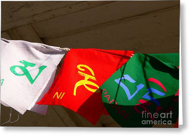 Prayer Flags Greeting Card by Angela Wright