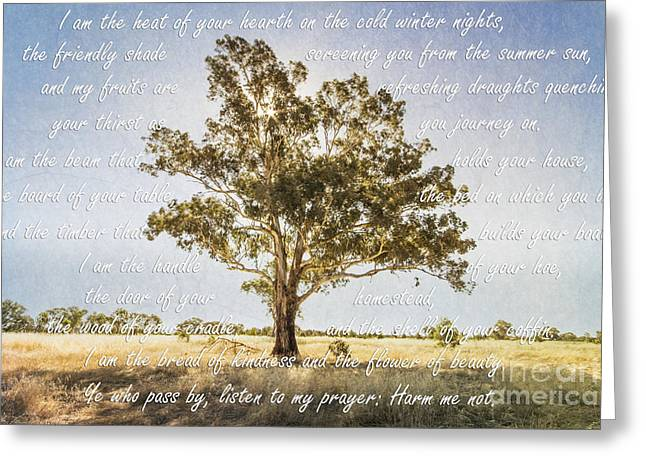 Gumtree Greeting Cards - Prayer of the Woods Greeting Card by Linda Lees