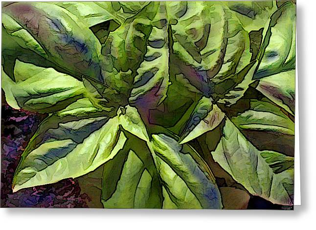 Grocery Store Paintings Greeting Cards - Pre Pesto Plant Greeting Card by Elaine Plesser