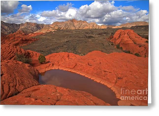 Southern Utah Greeting Cards - Precious Desert Water Greeting Card by Adam Jewell