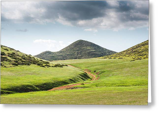 Back Country Greeting Cards - Precious Green Greeting Card by Alexander Kunz