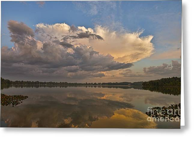 Water Reflecting At Sunset Greeting Cards - Precursor Greeting Card by David Arment