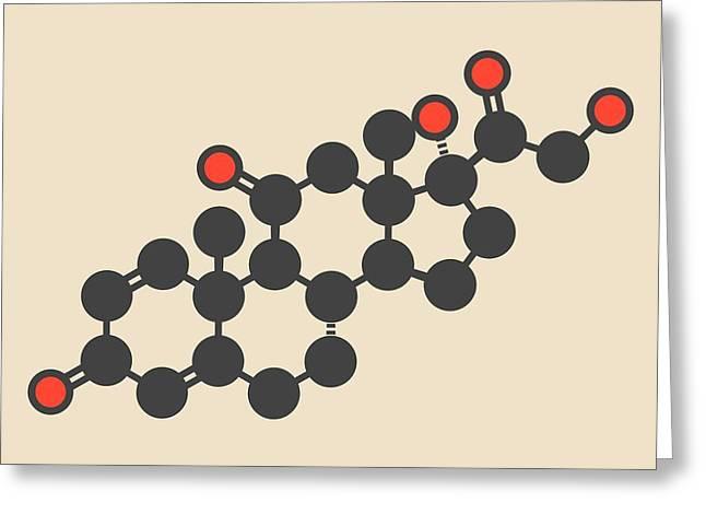 Prednisone Corticosteroid Drug Molecule Greeting Card by Molekuul