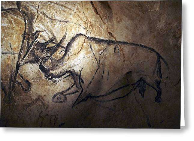 Zoology Greeting Cards - Prehistoric cave paintings, Chauvet Greeting Card by Science Photo Library