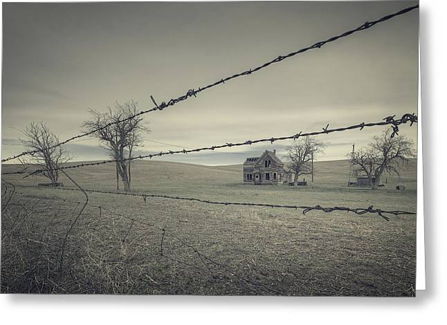 Barbed Wire Greeting Cards - Preservation of a life Greeting Card by Everet Regal