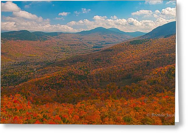 Munroe Falls Greeting Cards - Presidential Range in Autumn Greeting Card by Brenda Jacobs