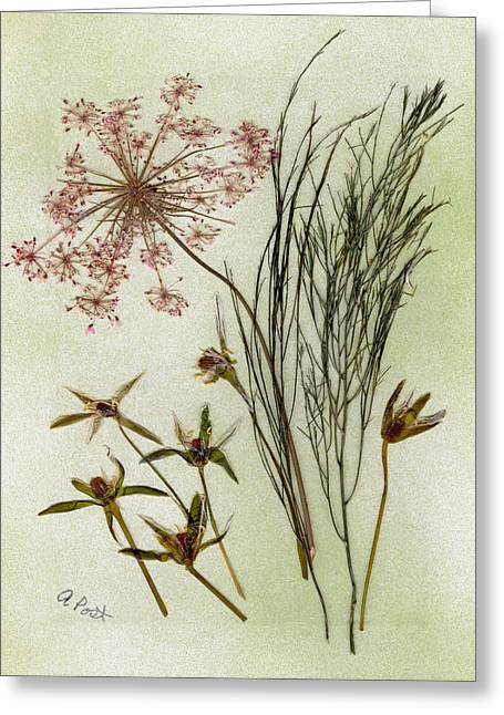 Spring Bulbs Mixed Media Greeting Cards - Simple Pleasures Greeting Card by Anne Post