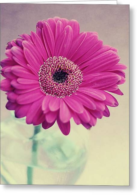 Floral Photographs Greeting Cards - Pretty daisy Greeting Card by Nastasia Cook