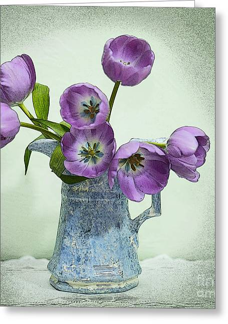 Pretty Faces Greeting Card by Betty LaRue