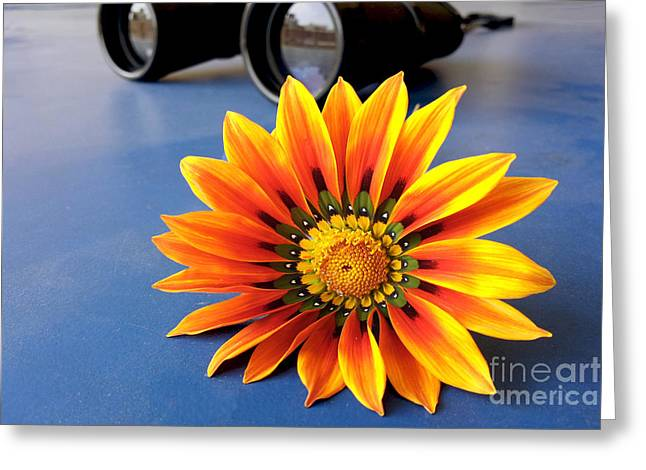 Lens Mixed Media Greeting Cards - Pretty Flora Greeting Card by Ameresh Mishra