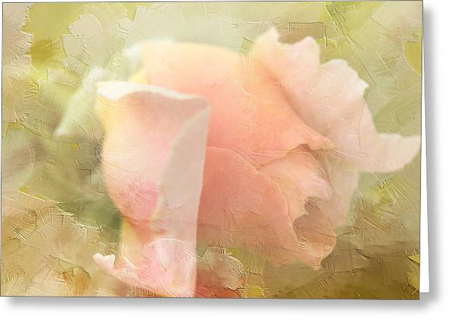 A New Focus Photography Greeting Cards - Pretty in Pink Greeting Card by A New Focus Photography