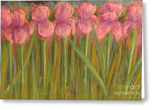 Iris Pastels Greeting Cards - Pretty Irises all in a roll Greeting Card by Barbara Runyon Fregia
