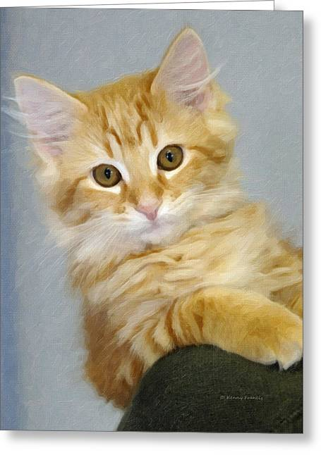 Pretty Kitten Greeting Card by Kenny Francis