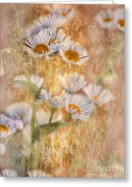 Pretty Little Weeds IIi Greeting Card by Debbie Portwood