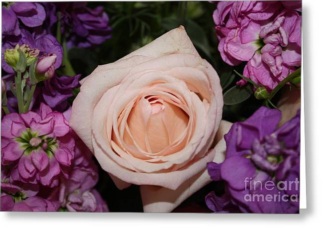 Pinks And Purple Petals Greeting Cards - Pretty Pastel Flowers Greeting Card by Danielle Groenen