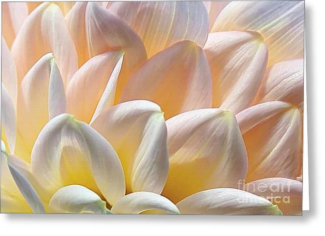 Rhythmic Greeting Cards - Pretty Pastel Petal Patterns Greeting Card by Kaye Menner