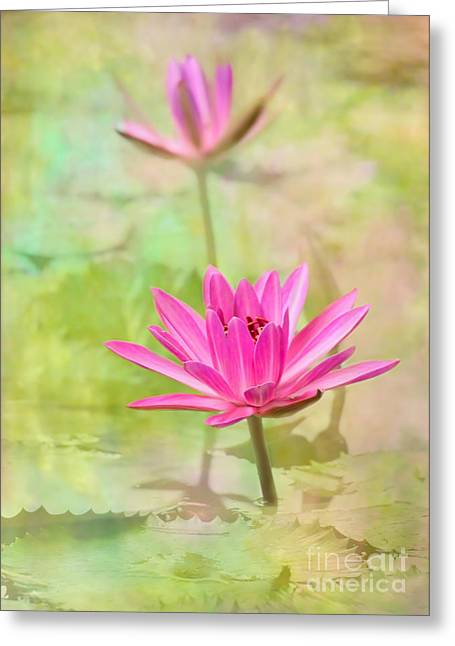 Pretty Pink Ladies Greeting Card by Sabrina L Ryan