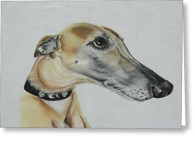 Hound Pastels Greeting Cards - Pretty Please Greeting Card by Rose Slack