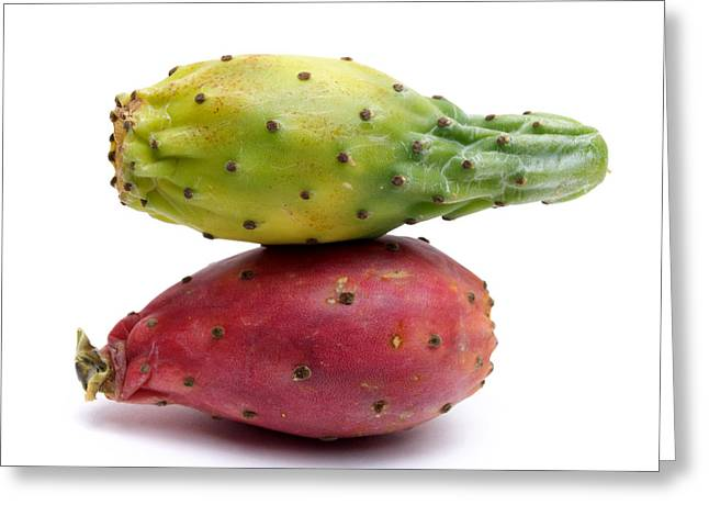 Prickly Greeting Cards - Prickly pear Greeting Card by Bernard Jaubert