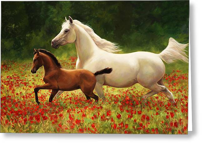 Arabian Horses Greeting Cards - Pride and Joy Greeting Card by Laurie Hein