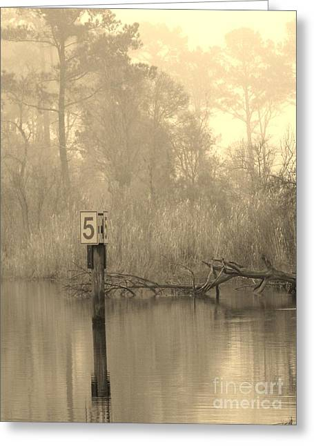 Reassurance Greeting Cards - Pride Greeting Card by John  Glass