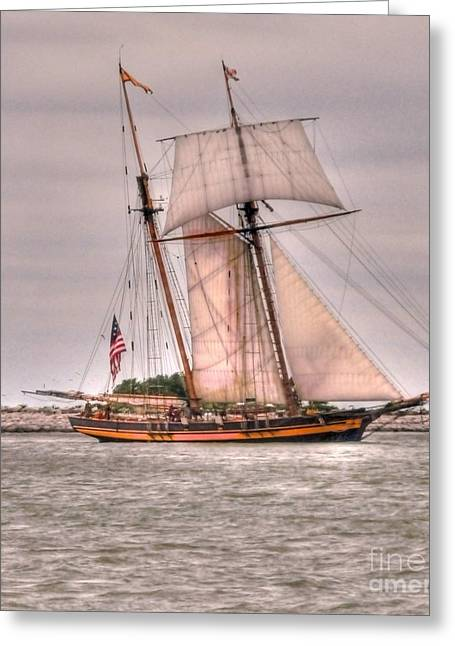 Best Sailing Photos Greeting Cards - Pride Of Baltimore Greeting Card by Kathleen Struckle