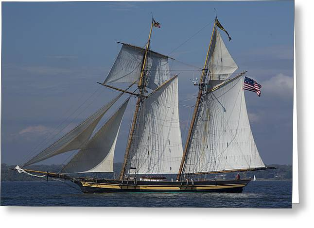 Recently Sold -  - Historic Schooner Greeting Cards - Pride of Maryland Greeting Card by Mark Milar