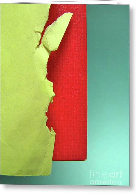 Primary Greeting Card by CML Brown