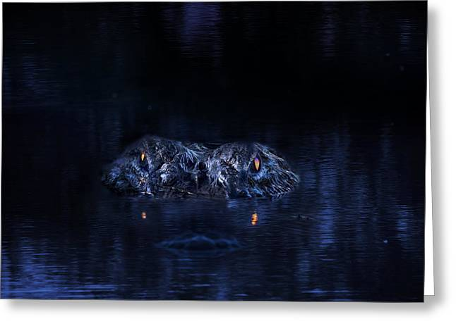 Beauty Mark Photographs Greeting Cards - Primeval Greeting Card by Mark Andrew Thomas