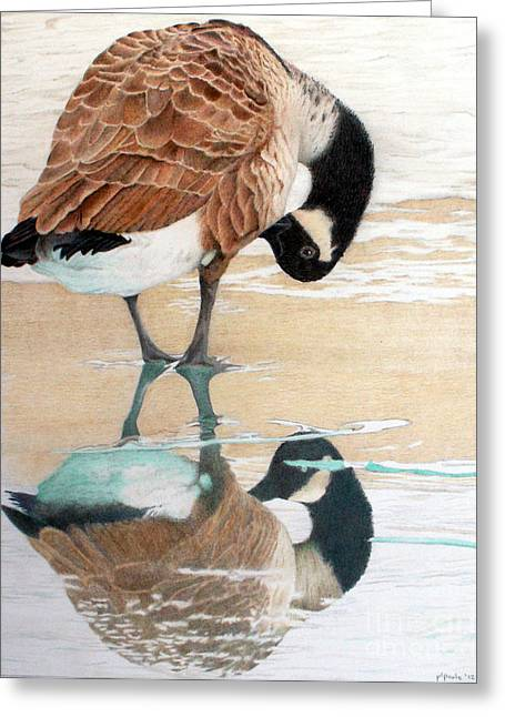 Bird Jewelry Greeting Cards - Primping in the Mirror Greeting Card by Patty Poole