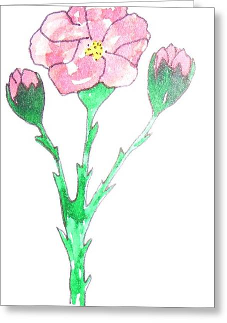 Primroses Drawings Greeting Cards - Primrose Greeting Card by Erika Chamberlin