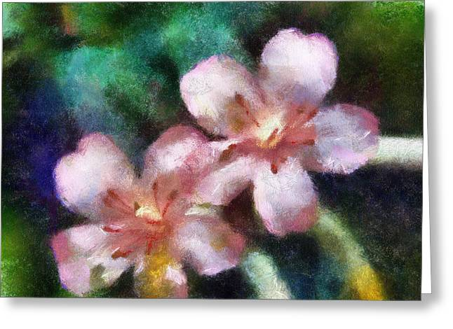 Primroses Mixed Media Greeting Cards - Prims Greeting Card by David Jackson
