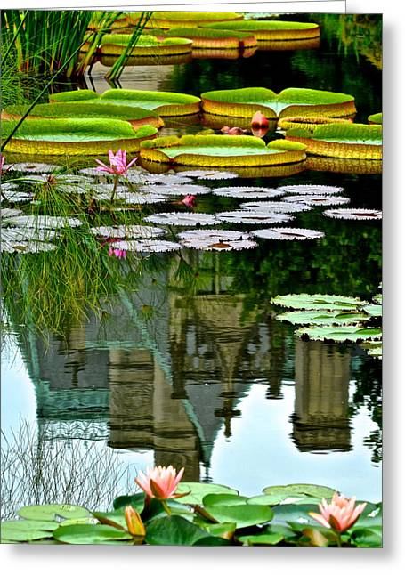 Lilly Pad Greeting Cards - Prince Charmings Lily Pond Greeting Card by Frozen in Time Fine Art Photography