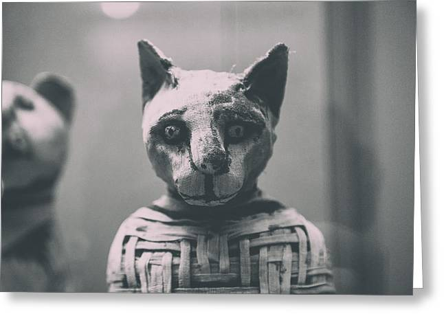 Egyptian Mummy Greeting Cards - Prince of Purrsia.. Greeting Card by A Rey