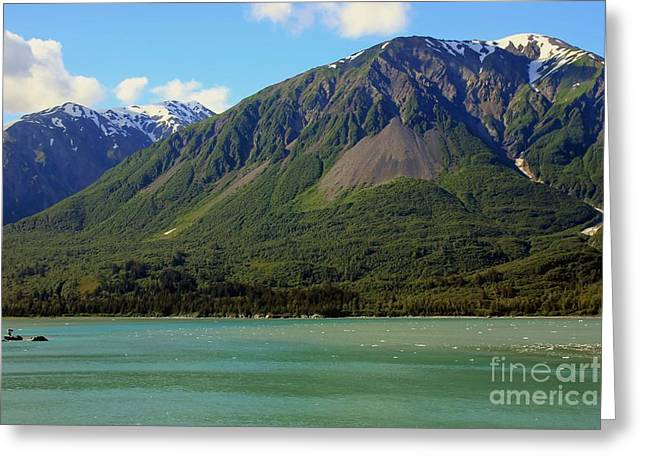 Prince William Greeting Cards - Prince William Sound landscape Greeting Card by Sophie Vigneault