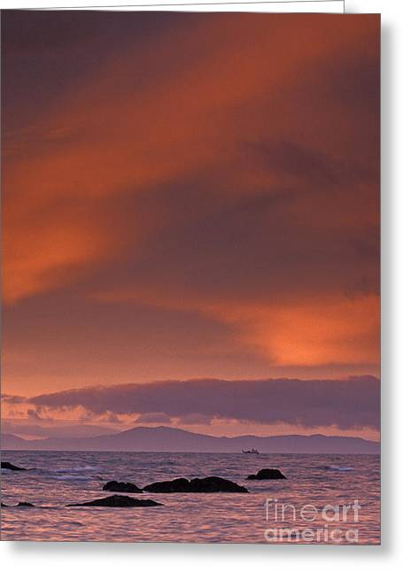 Prince William Sound Greeting Cards - Prince William Sound Sunrise Greeting Card by Tim Grams