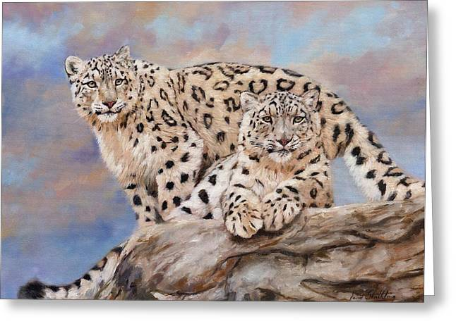 Big Cat Print Greeting Cards - Princes Of The Peaks Greeting Card by David Stribbling