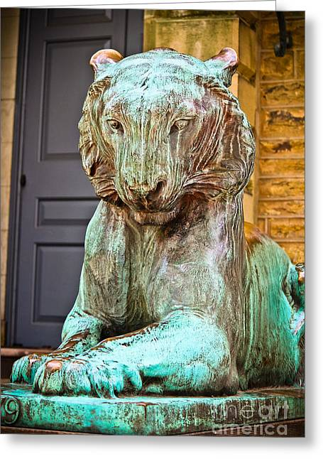 Wall Art Sculptures Greeting Cards - Princeton Tiger II Greeting Card by Colleen Kammerer
