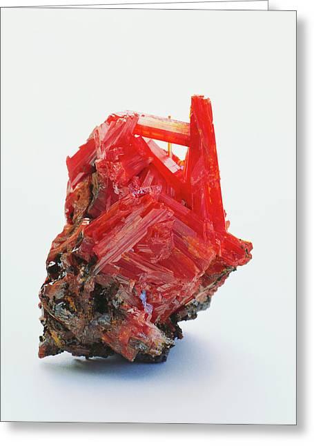 Prismatic Crocoite Crystals Greeting Card by Dorling Kindersley/uig