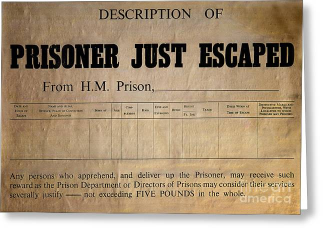 Description Greeting Cards - Prisoner Escaped Greeting Card by Adrian Evans