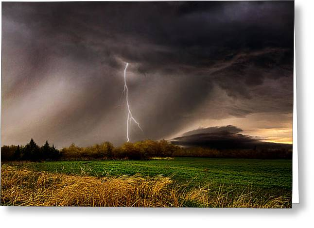 Profound Greeting Card by Phil Koch