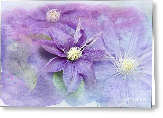 Profusion Of Purple Greeting Card by Betty LaRue