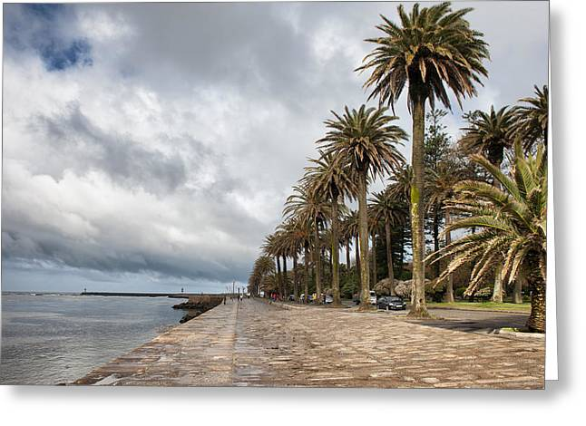Esplanade Outdoors Greeting Cards - Promenade at Douro River in Foz District of Porto Greeting Card by Artur Bogacki