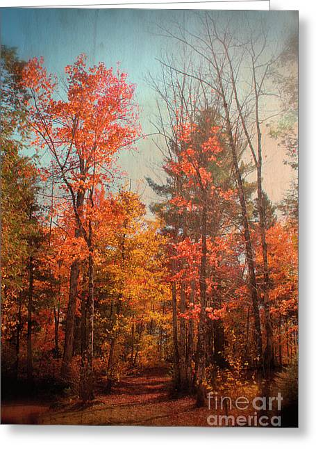 Aimelle Photography Greeting Cards - Promenade en Foret Greeting Card by Aimelle