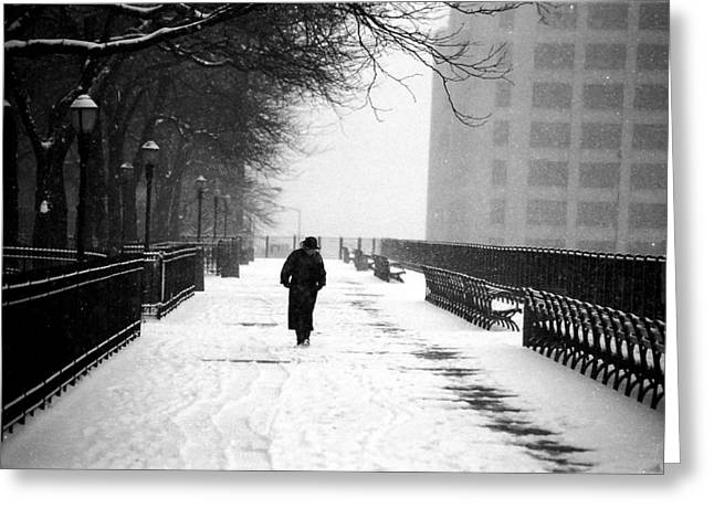 Brooklyn Promenade Greeting Cards - Promenade Snowscene Greeting Card by Tom Callan
