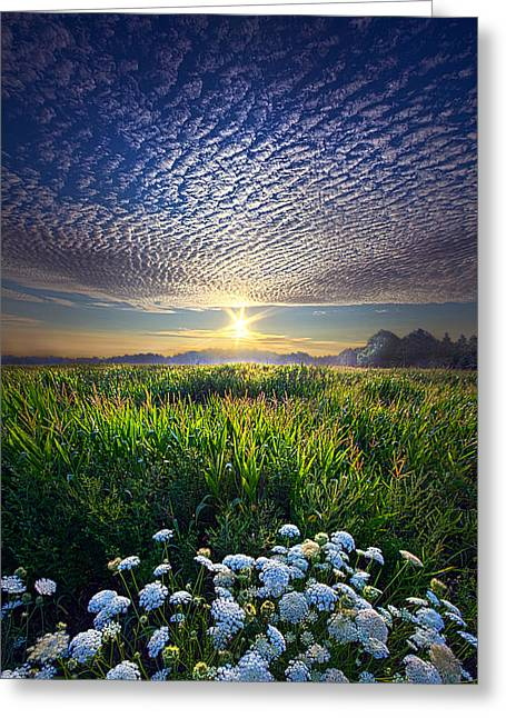 Queen Greeting Cards - Promise Fulfilled Greeting Card by Phil Koch