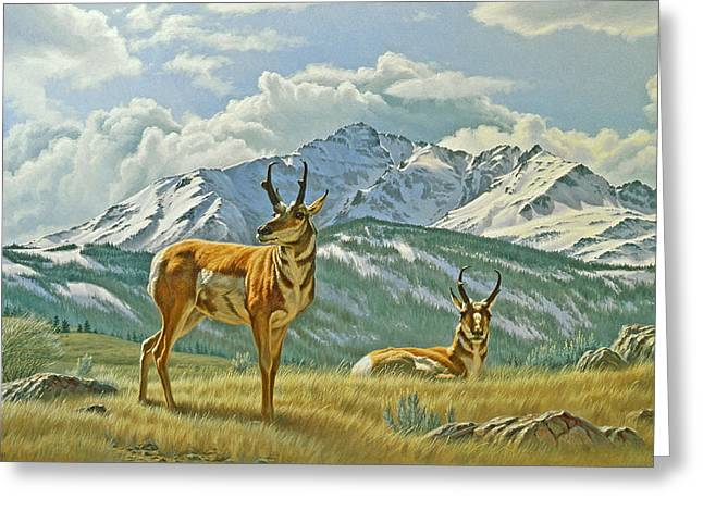 Wildlife Greeting Cards - Pronghorn Below Electric Peak Greeting Card by Paul Krapf