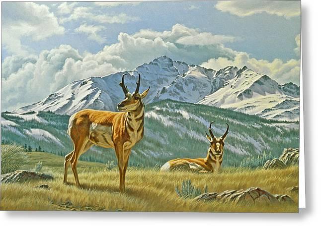 Pronghorn Greeting Cards - Pronghorn Below Electric Peak Greeting Card by Paul Krapf