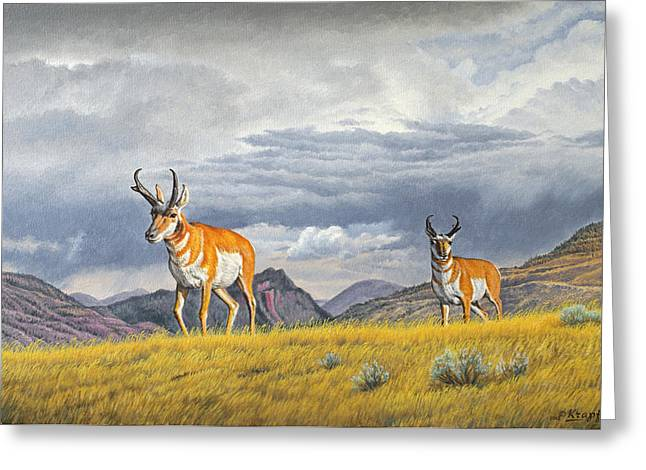 Pronghorn Greeting Cards - Pronghorn-Coming over the Rise Greeting Card by Paul Krapf